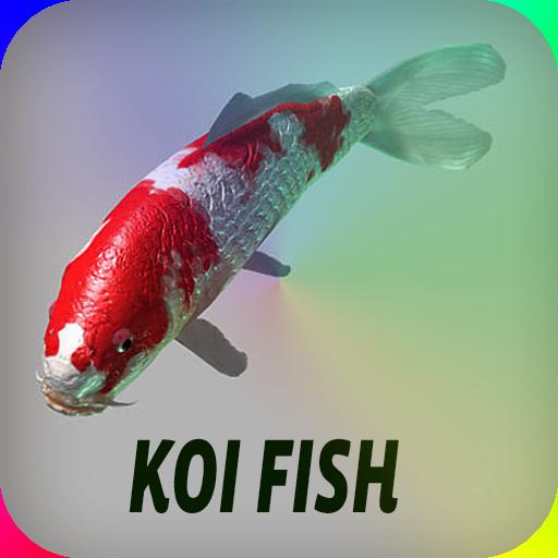 鯉魚 娛樂 LOGO-玩APPs