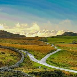 Cregennan Lake by Nigel Bishton - Landscapes Mountains & Hills