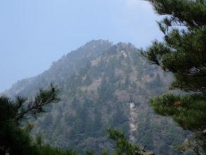 奇岩が見える