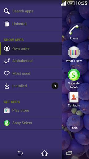 玩免費個人化APP|下載テーマ 葡萄 app不用錢|硬是要APP
