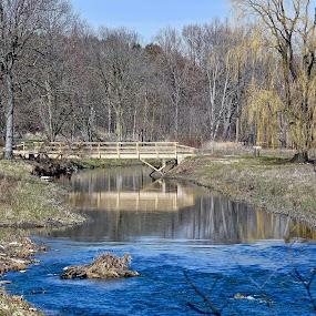 DuPage River by Viana Santoni-Oliver - Landscapes Waterscapes ( sky, forest, reflection, illinois, shore, lisle, water, trees, arboretum, flowing, outdoor, spring, morton, blue, grass, river, bridge )