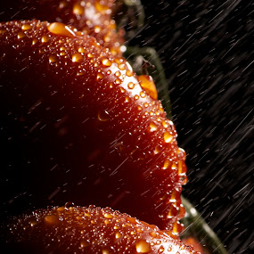 Fresh Tomatoes... by Joseph Quartson - Food & Drink Fruits & Vegetables ( red, tomato, fresh, drops, rain,  )