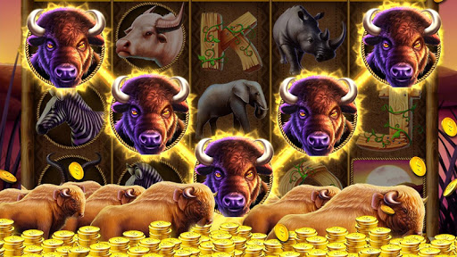 Slots: Free Slot Machines  1