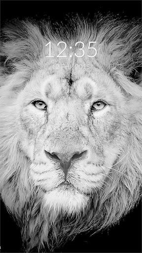 Lion Portrait Wall Lock