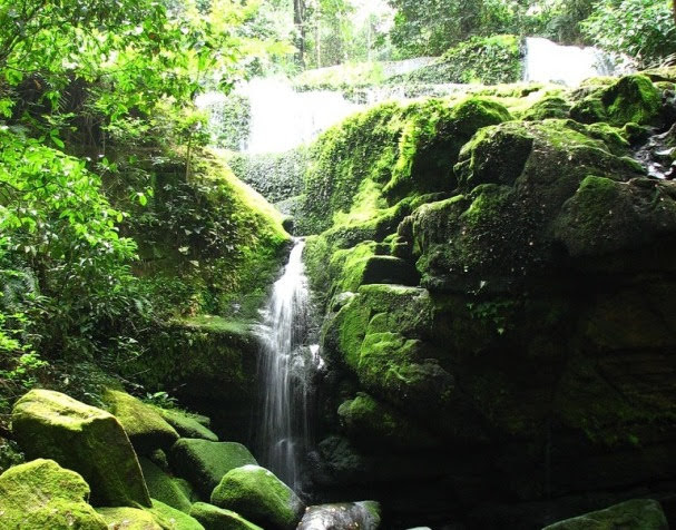 Parque Nacional Ivindo