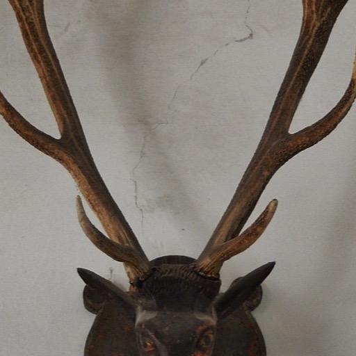 Mounted Antlers Wallpapers 娛樂 App LOGO-APP試玩