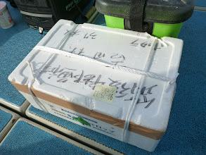 Photo: アダチさんの・・・って もう発泡BOXに入ってるので写真とれませんでした。
