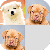 Puppy Photo Memory Game