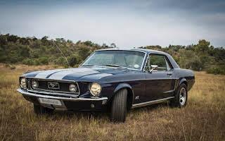 Ford Mustang Gt Rent Gauteng