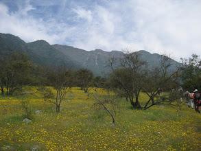 Photo: Im Hintergrund ist schon unser Ziel in Sicht: der Cerro Puerta de la Cordillera