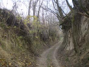 Photo: Mélyútban.