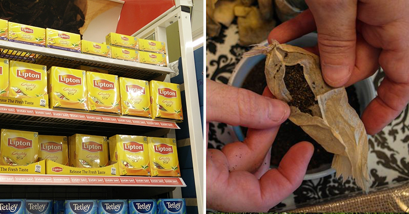 Most Popular Tea Bags Contain Illegal Amounts of Pesticides (Avoid These Brands At All Costs)