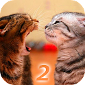 Ask Cat 2 Translator icon