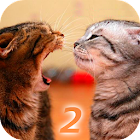 Ask Cat 2 Translator icon