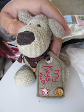 Photo: Year 2 Day 150 -  Boofle Has Some Silver in His Tag