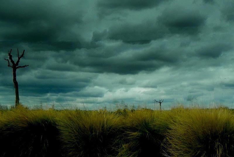Paesaggio con cielo tempestoso di mariateresacupani