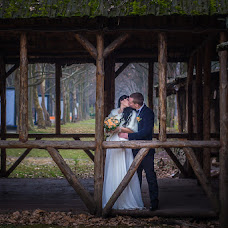 Wedding photographer Fedor Podgurskiy (TheodorSunray). Photo of 18.01.2016