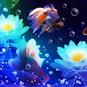 fish and water wallpaper icon