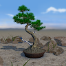 org.androidworks.livewallpaperbonsai
