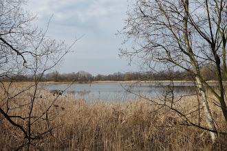 Photo: Velký Pavlovický rybník