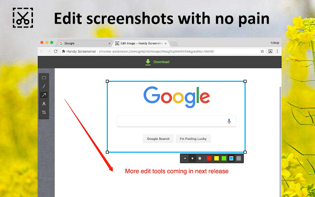 google chrome screenshot extension