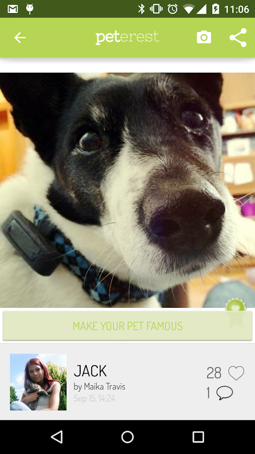 Peterest - Pet Image Gallery- screenshot