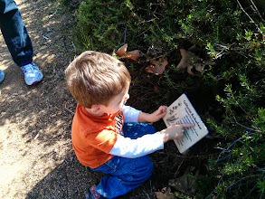 """Photo: Finn """"Reads"""" On Mary's Trail"""