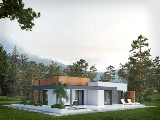 projekt Amika