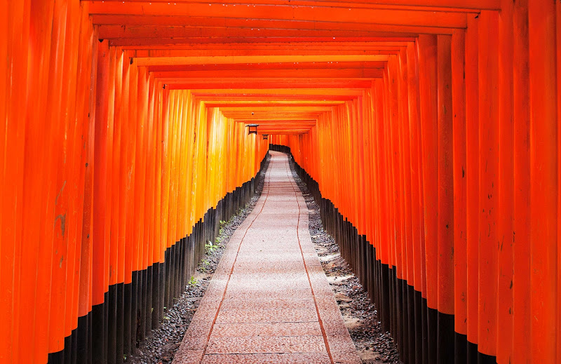 I torii di Fushimi Inari di Simone Sartorelli