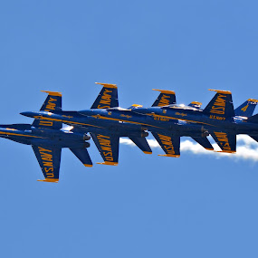 Blue Angels by Jarrod Unruh - Transportation Airplanes ( navy, transportation, jet, airshow, military,  )