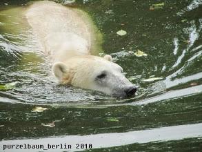 Photo: Das grosse Wasserbecken will entdeckt werden ;-)