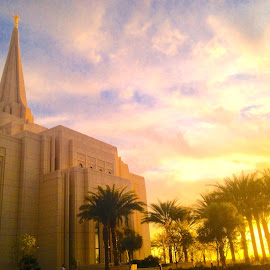 Gilbert Arizona LDS Temple by LaDawn Park - Buildings & Architecture Places of Worship