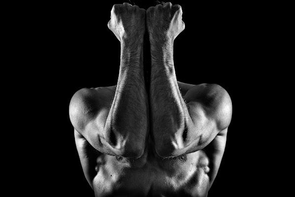 The muscle di Info@walteralberti.it