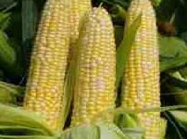 Saffron Corn Chowder Recipe