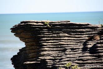 Photo: (Year 2) Day 275 -  The Pancake Rocks