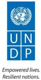C:\Users\dirk.wagener\AppData\Local\Microsoft\Windows\Temporary Internet Files\Content.Word\LOGO UNDP TAGline.jpg