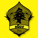 eGovernment-Pro icon