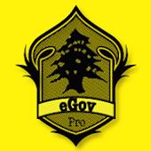 eGovernment-Pro