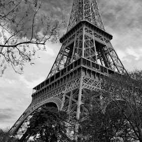 Framed Differently by Ewan Arnolda - Travel Locations Landmarks ( paris, famous, structure, pwclandmarks, iconic, popular, france, architecture, travel )