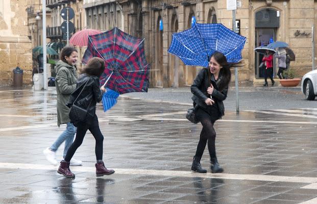 Pioggia in allegria di Libero