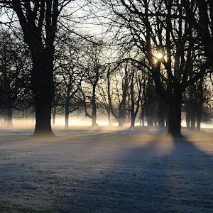 Hyde Park - London.JPG