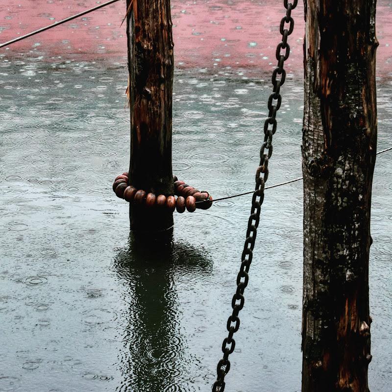 Pioggia in laguna di selcoffee