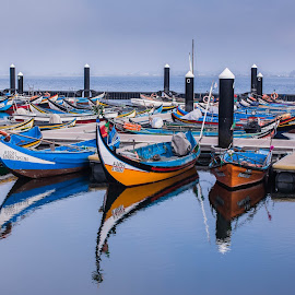 by David Barash - Transportation Boats