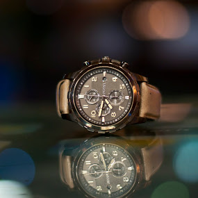 Fossil by Sudheer Hegde - Artistic Objects Other Objects ( time, 50mm, sudheer, nikon, bokeh )