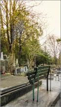 Photo: Turda - Cimitirul Central - 2018.04.07