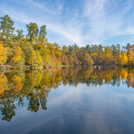 On the lake by Oleg Utyuzh - Landscapes Forests ( forest, autumn, lake, trees, landscape,  )