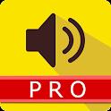 NEO Speaker KakaoTalk Pro icon