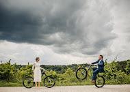 Hochzeitsfotograf Oleg Steinert (MoviesArt). Foto vom 17.08.2017