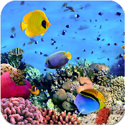 Beautiful Underwater Sea Life APK