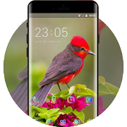 Red headed rookie bird theme APK